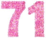 Арабский цифр 71, 70 одних, от розовой незабудки цветет, Стоковые Фотографии RF