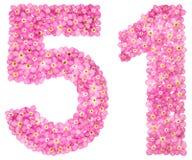 Арабский цифр 51, 50 одних, от розовой незабудки цветет, I Стоковое фото RF