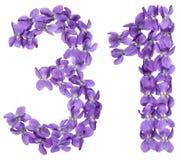 Арабский цифр 31, 30 одних, от цветков альта, изолировал o Стоковое Изображение RF
