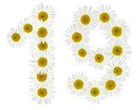 Арабский цифр 19, 19, от белых цветков стоцвета, Стоковая Фотография RF