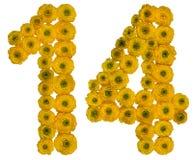 Арабский цифр 14, 14, от желтых цветков лютика, Стоковые Фото