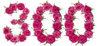 Арабский цифр 300, 300, от красных цветков поднял, iso Стоковое Изображение RF