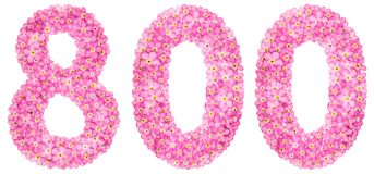 Арабский цифр 800, 800, от розового flowe незабудки стоковая фотография