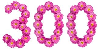 Арабский цифр 300, 300, от цветков хризантемы Стоковые Фото