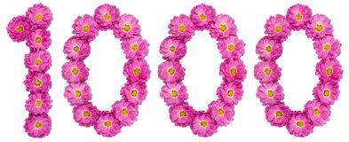 Арабский цифр 1000, тысяча, от цветков хризантемы Стоковая Фотография