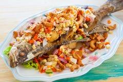 Аранжированная еда рыб Стоковые Фотографии RF