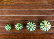 Аранжированные pumkins зеленого цвета натюрморта pepo Cucurbita Стоковое фото RF