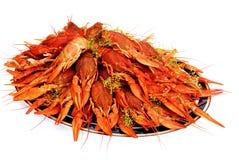 аранжированный сваренный поднос укропа crayfish Стоковые Фото