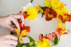 Аранжировать белой предпосылки венка цветка флористический стоковые изображения rf