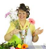 аранжировать домохозяйку цветка стоковые фото