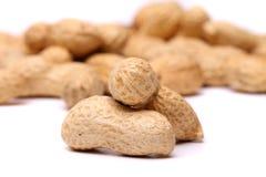 2 арахиса в крупном плане на предпосылке арахиса Стоковые Изображения