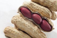 арахисы арахиса слезая красный цвет Стоковое фото RF