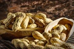 Арахисы в деревянном шаре Стоковая Фотография