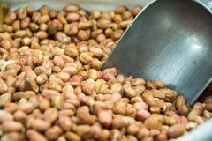 арахисы сырцовые Стоковое фото RF