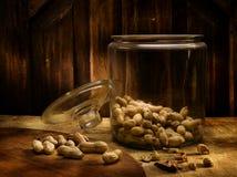 арахисы Стоковые Фотографии RF