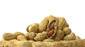 арахисы Стоковое фото RF