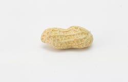 Арахис изолированный на белизне, арахис, сухой арахис Стоковая Фотография RF