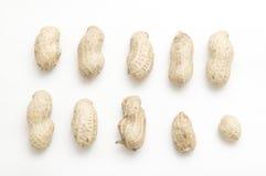 арахис Стоковая Фотография RF