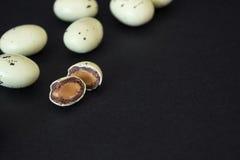 Арахис wirh шоколадов в форме яичек триперсток 2 всех пасхального яйца принципиальной схемы цыпленока ведра цветут детеныши покра Стоковые Изображения