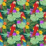 Ара с тропическим заводом и цветками иллюстрация штока