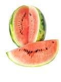 арбуз плодоовощ Стоковое фото RF