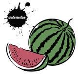 Арбуз ягоды сочный иллюстрация вектора