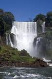 Аргентина падает iguazu s стоковые фото