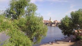 Ареальный реки Влтавы и иконического Карлова моста, птиц летая перед камерой акции видеоматериалы