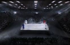 Арена бокса с светом стадиона стоковые изображения rf