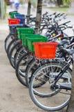 Арендные велосипеды в Ла Digue, Сейшельских островах Стоковое Изображение