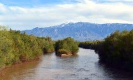 Аризона: Река Гила с Mt graham стоковые фото