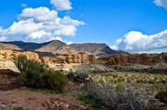 Аризона Стоковые Изображения