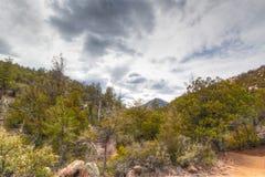Аризона, Prescott, след мытья Глуш-мяты горы гранита Стоковое Изображение RF