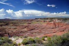 Аризона s покрашенный пустыней стоковые изображения rf