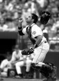 Аркада New York Mets Майк Стоковая Фотография RF