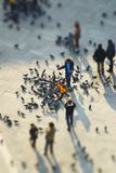 аркада san людей marco Стоковое Фото