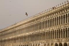 Аркада Сан Marco Венеция стоковое фото rf