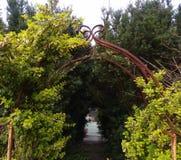 арка естественная стоковое фото