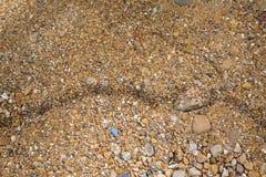 Армия серий черных муравьев идя на путь камешка Стоковые Фотографии RF