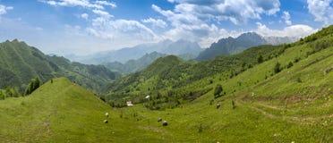 Армянка outdoors стоковая фотография