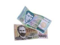 Армянские деньги стоковые изображения rf
