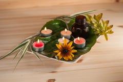 ароматерапия с травами и маслом стоковые фото