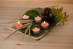 ароматерапия с травами и маслом стоковые изображения rf