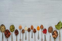 Ароматичные индийские специи и травы на ложках металла: анисовка звезды, душистый перец, циннамон, мускат, залив выходит, паприка стоковые изображения rf