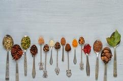 Ароматичные индийские специи и травы на ложках металла: анисовка звезды, душистый перец, циннамон, мускат, залив выходит, паприка стоковое изображение