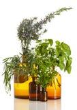 Ароматичные травы в винтажных бутылках фармации Стоковое Изображение