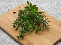 ароматичные травы Стоковые Изображения RF