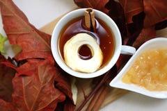 Ароматичный чай с высушенной ручкой яблока и циннамона стоковые фотографии rf
