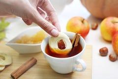 Ароматичный чай с высушенной ручкой яблока и циннамона стоковое фото