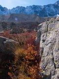 Арсин ` Col d, могила Ла, alpes hautes, ФРАНЦИЯ стоковая фотография rf
